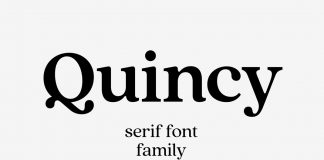 Quincy CF vintage serif font family by Connary Fagen.