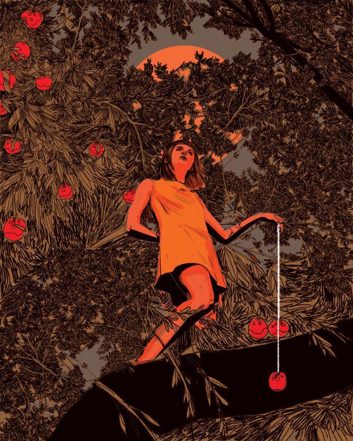 Apples: illustration by Nicole Rifkin.