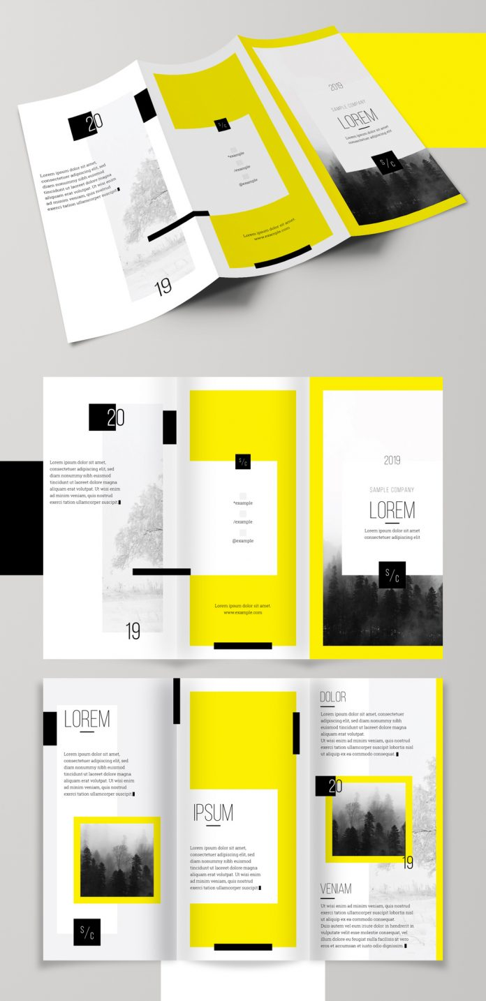 Download for free on Adobe Stock: Bold and Bright Trifold Brochure Layout by Medialoot