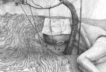 Drawings by Stefan Zsaitsits