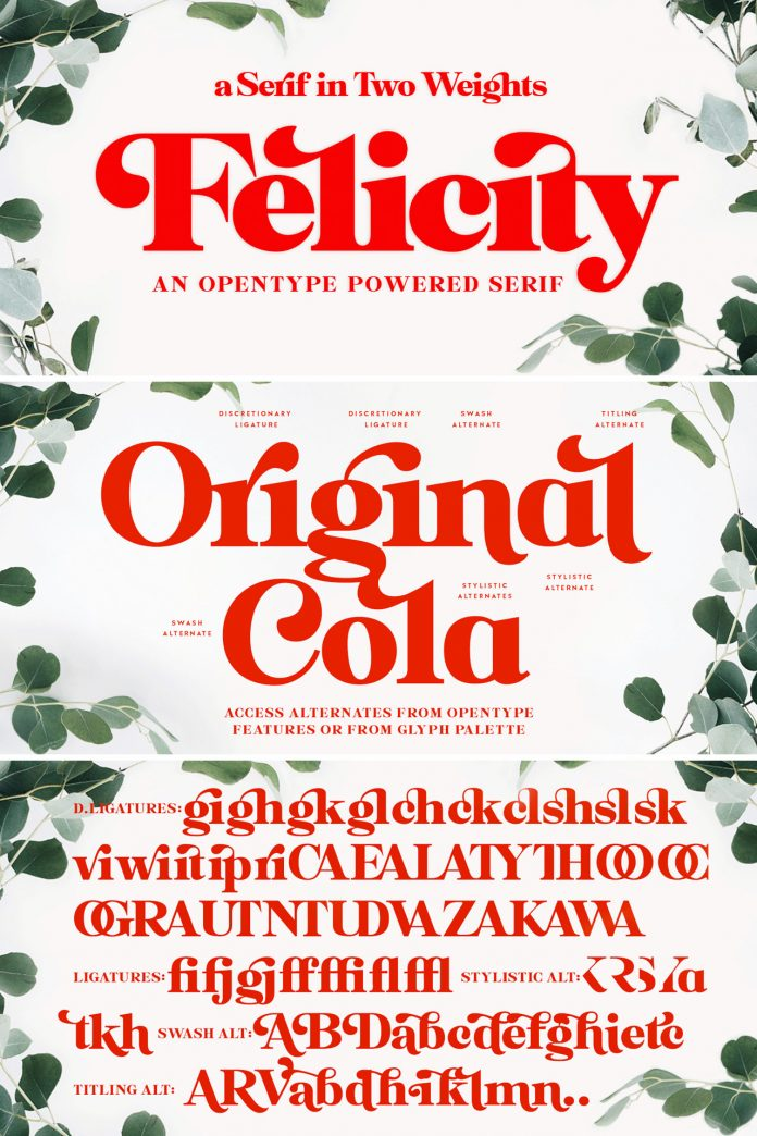 Felicity Serif Font from Fenotype