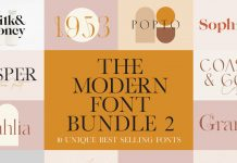 A Modern Vintage Font Bundle by New Tropical Design