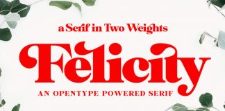 Felicity serif font from Fenotype.