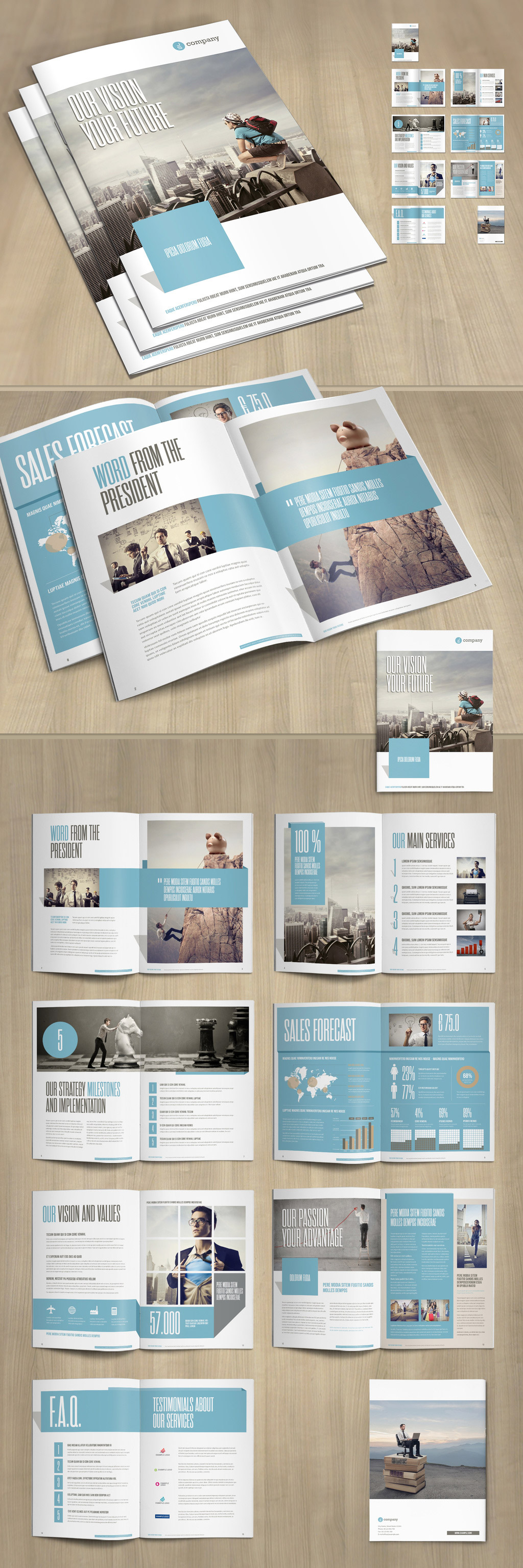 Business brochure layout with pale blue and gray accents.