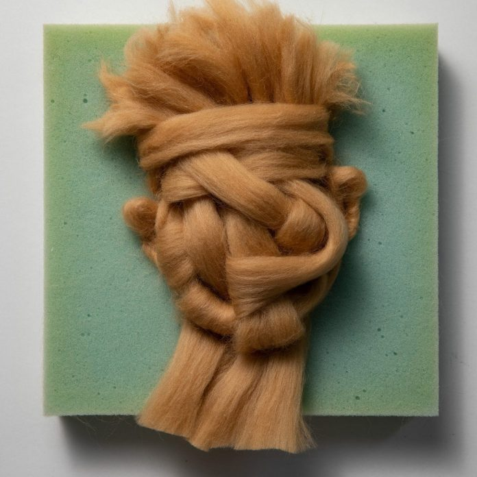 Wool on Foam portrait by Salman Khoshroo