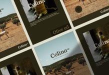 Colina branding by NOANCE Studio