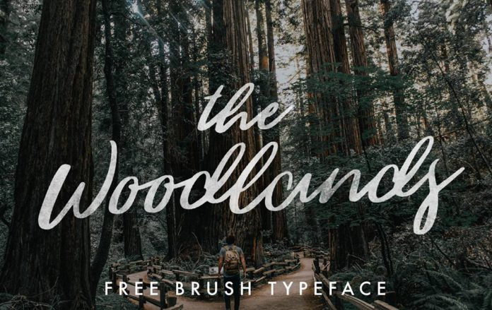 The Woodlands, a free brush script