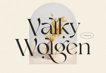 Valky font, a classic modern typeface by NEWFLIX.Bro