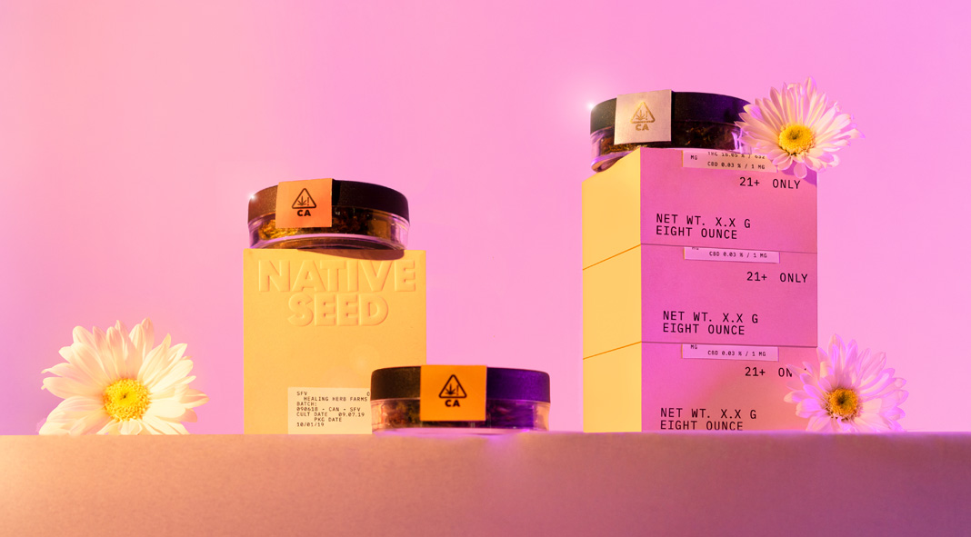 Visual identity design by studio Futura for cannabis brand Native Seed.