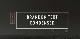 Brandon Text Condensed Font Family by HVD Fonts.
