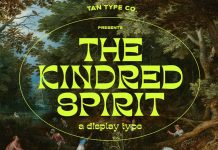 TAN KINDRED typeface from TanType
