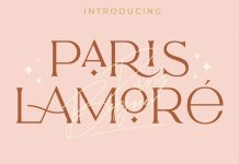 The Paris Lamore Sans and Script Font by NEWFLIX.Bro.