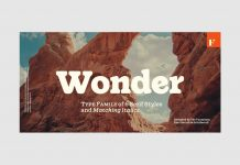 Wonder font family by Fenotype.