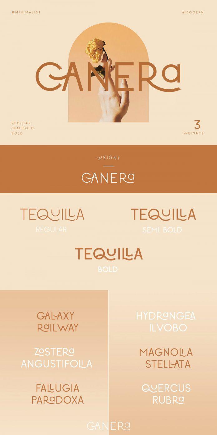 Canera Font by Creative Corner