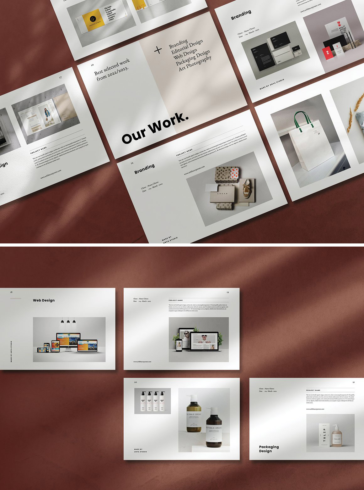 Graphic Design Portfolio Brochure