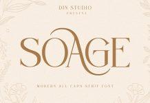 Soage Serif Font by Din Studio