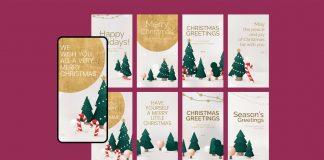 Christmas Greetings Story Templates
